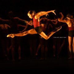 Florida Summer Dance Intensives: Study Dance in Miami and Tampa!