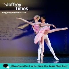 A Letter From The Sugar Plum Fairy